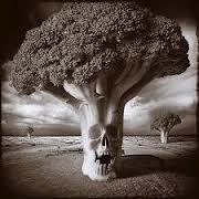 Evil broccoli
